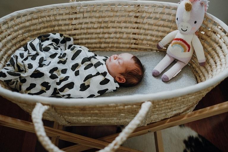 newborn photo in bassinet