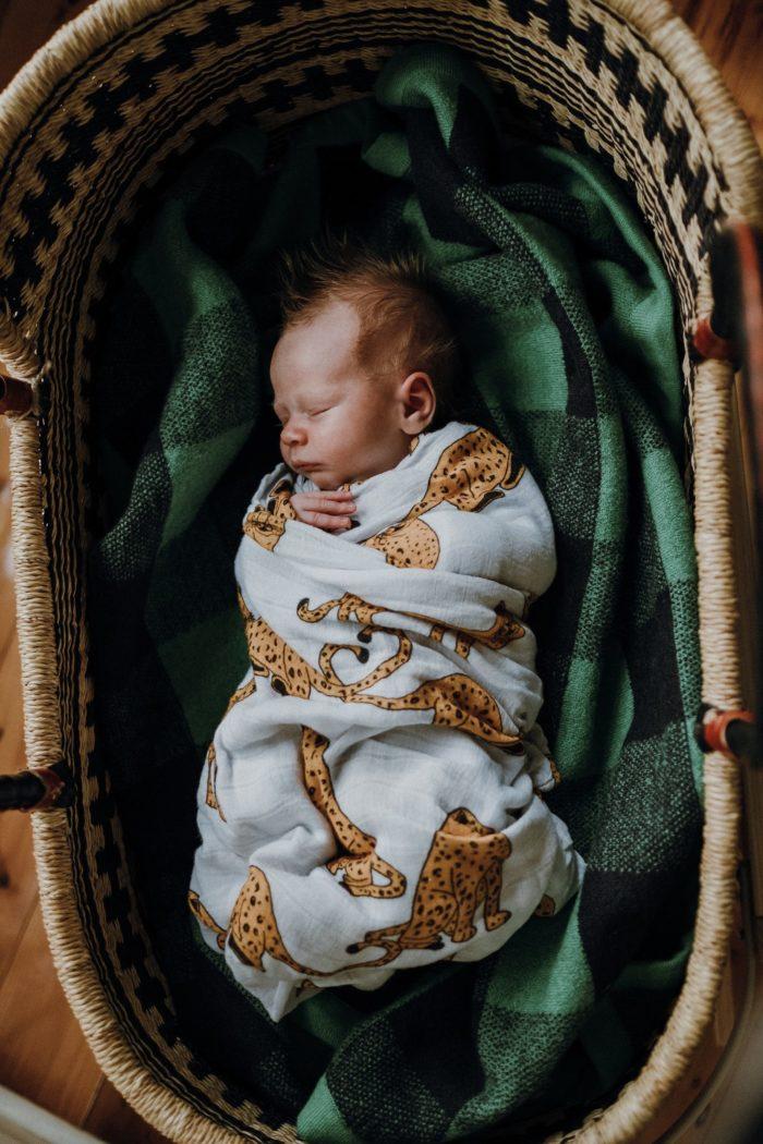 newborn-moses-basket-Melbourne