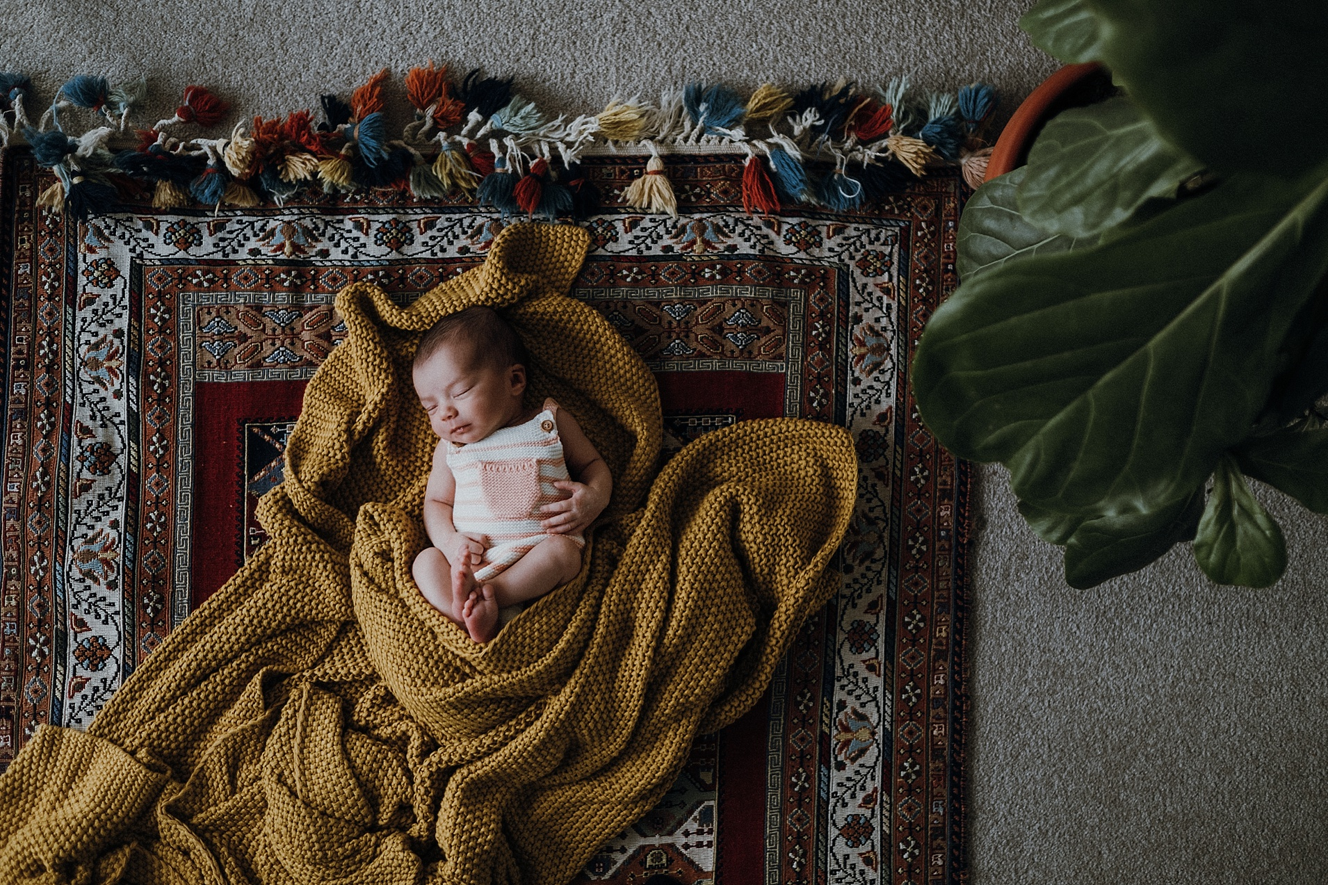 natural-baby-photography-melbourne